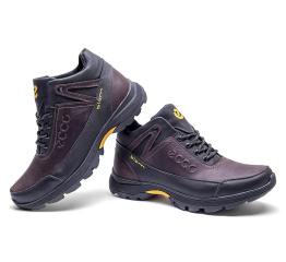 Мужские ботинки на меху Ecco Biom Active Drive коричневые