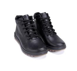 Купить Мужские ботинки на меху Ecco черные в Украине