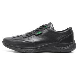 Купить Мужские кроссовки Lacoste Lerond черные