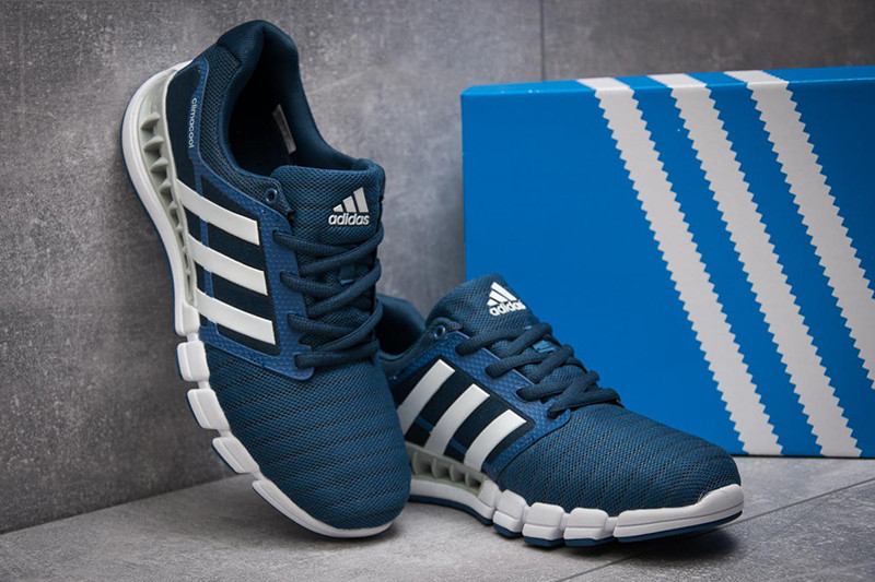 2ccd9a18 Мужские кроссовки Adidas Climacool Revolution синие