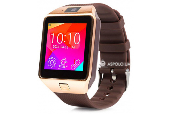 Смарт часы SmartWatch DZ09 gold/brown