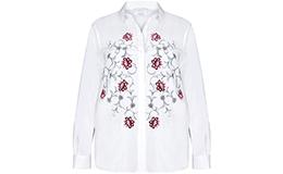 Блузки и рубашки (25)
